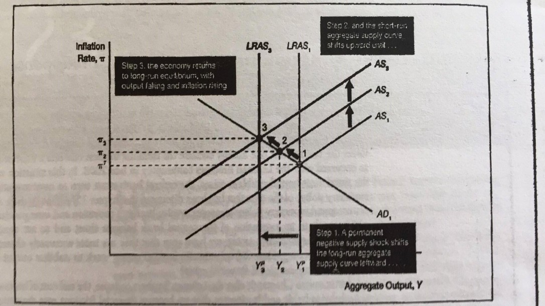 k-eco-grafico2