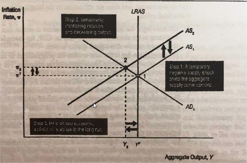 k-eco-grafico3