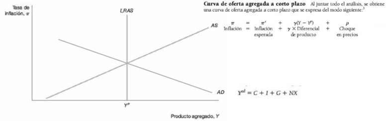 l-eco-figura2